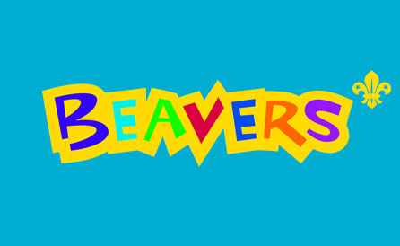 Beavers in Orpington, Kent